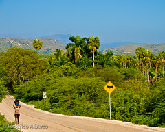 Long and Winding Road (Federico Alberto) Tags: woman mountains mujer carretera dominicanrepublic bluesky olympus palmeras route palmtrees e3 nophotoshop lush 50200mm trafficsigns republicadominicana montaas palmas cieloazul tropicalforest repblicadominicana rpubliquedominicaine frondoso nohdr sealesdetrfico olympuse3 zd50200mmswd provinciabahoruco bahorucoprovince forestatropical