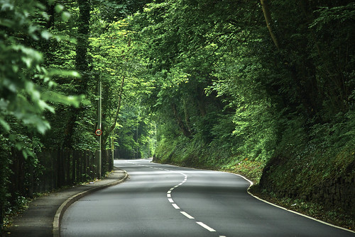 The Leafy Road To Llantrisant
