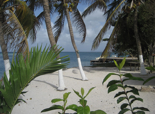 Savaneta in Aruba