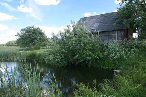Holzhaus am Gartenteich