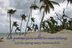 motivation (jason_minahan) Tags: inspiration motivation