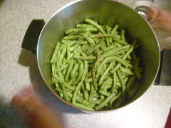 Green Beans From the Garden