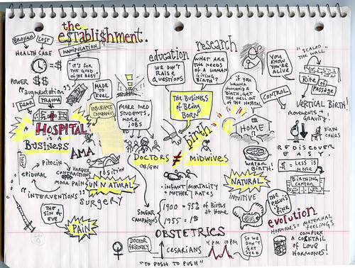 "Mind Map of ""The Business of Being Born"" Documentary"