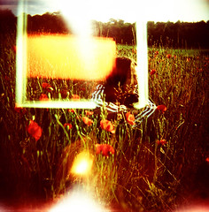(Arnaud Tudoret) Tags: morning flowers light 120 6x6 film nature mediumformat landscape holga kid xpro lomography ella sunny lightleaks squareformat crossprocessing poppies xprocessed vignetting normandy xprocessing leaks superposition e6c41 arnaudtudoret donkeysoho