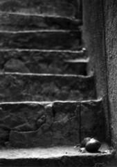 (Luce-Chiara #1) Tags: palermo chiara sicilia alcamo poggioreale degiovanni chiarettasikula