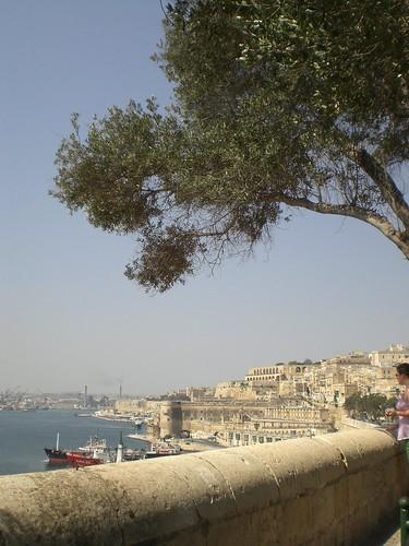 sol (malta 2008)