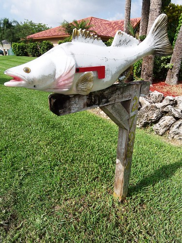 Dead fish mailbox