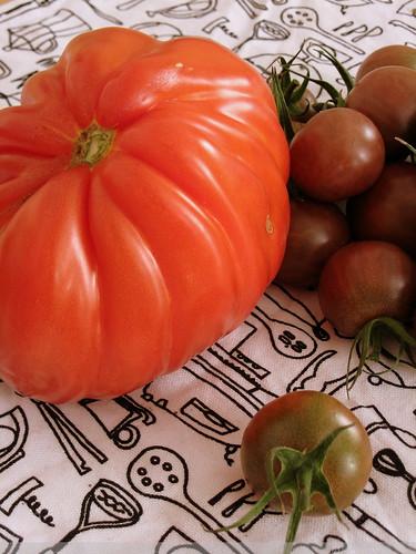 tomaaato