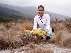 Eu - Me (Regiane Lima) Tags: flowers flores me yellow landscape eu amarelo alto ibitipoca montanhas