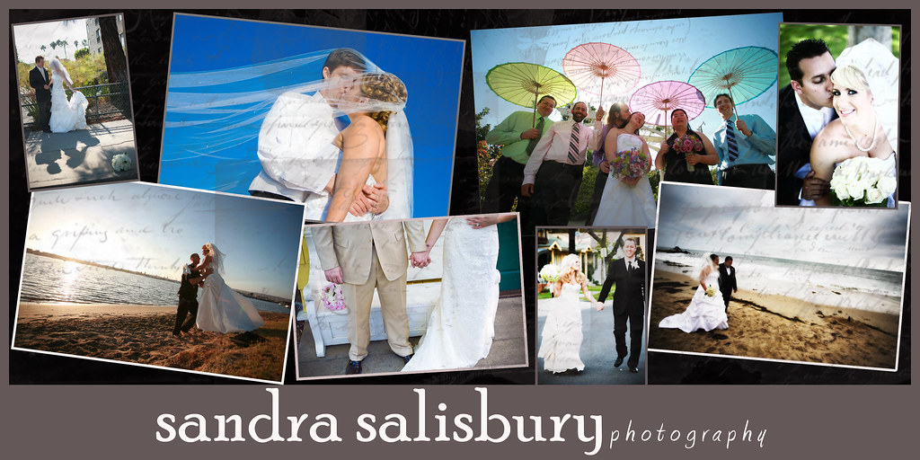 Sandra Salisbury Photography Blog