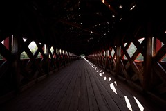 Light and shadow vanishing point (Mary Susan Smith) Tags: wood bridge light vanishingpoint shadows perspective bigmomma 3waychallengewinner photofaceoffwinner photofaceoffgoldmedal pfogold achallengeforyou storybookwinner gamesweepwinner