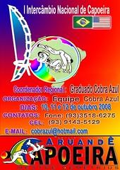 Aruandê Capoeira Pará