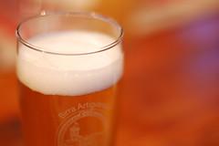 sete ??   hhhhaaaaa ...... (photolupi) Tags: dof giallo trento birra trentino dolomiti bicchiere schiuma fiemme photolupi luigipiazzi
