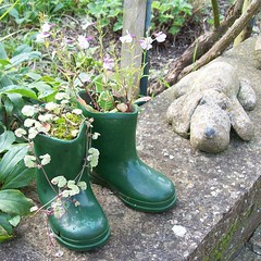Wellies (Martha-Ann48) Tags: green boots planters wellies gardenornaments thefunhouse funshots stonedogs floppsy unusualplanters