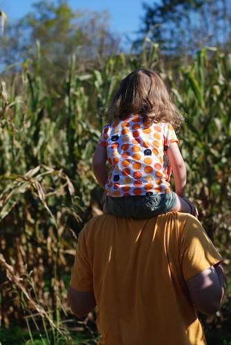 corn maze 072