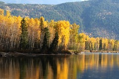 Good morning! (peggyhr) Tags: canada mountains fall water reflections river bc driveby explore pines chapeau poplars hwy5 artisticexpression 50faves youmademyday mywinners platinumphoto isawyoufirst peggyhr citritbestofyours theunforgettablepicture goldsealofquality betterthangood theperfectphotographer yourpreferredpicture explorewinnersoftheworld photographerparadise naturescreations mirrorser saariysqualitypicturesgallery flickrclassique