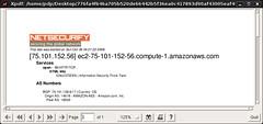 Netsecurify Demo 09