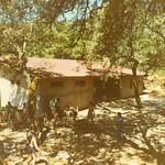 Campamento Descargamaria Instalaciones