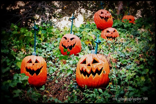 Haunted Manson Pumpkins