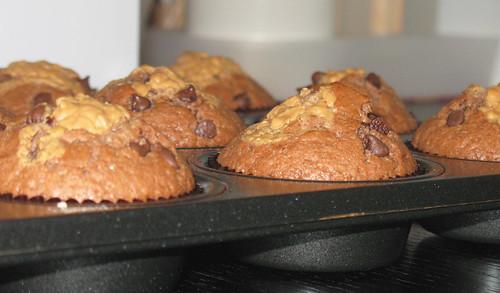 muffin0793