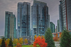 Coal Harbour in November- (Eyesplash - There is a change in the air.) Tags: canada vancouver britishcolumbia burrardinlet coalharbour donwtown supershot anawesomeshot theunforgettablepictures theunforgettablepicture
