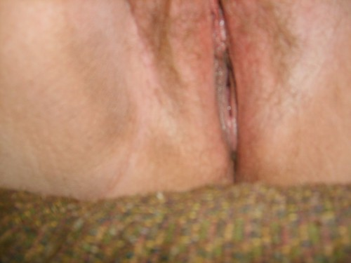 perfect free shaved pussy galleries porn pics: pussy, shavedpussy