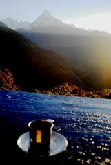 Mountain Sunset View at Tadapani (BuggeredCamera) Tags: blue nepal sunset mountain cup trekking table view annapurna fishtail tadapani machhapuchhare