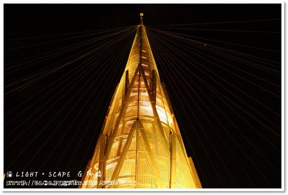 20081129_LIGHT SCAPE_50D_100