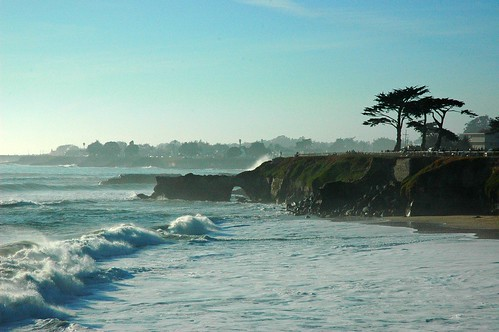 The Surf, arch or bridge, trees, coastal outline, Santa Cruz, California, USA by Wonderlane