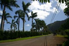 IMG_7461 (Will Chen) Tags: hawaii waimanalo 2009 ahupuaa