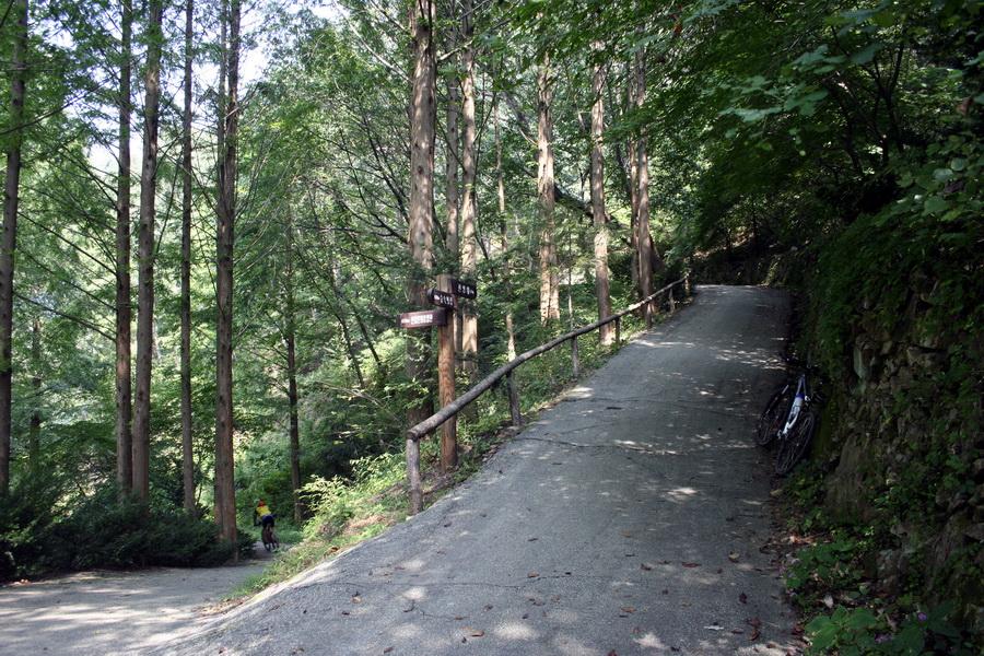 Jangtaesan provinvial park(6)