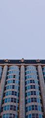 Corporate Goddesses (LucaFoto!) Tags: sanfrancisco california goldengatepark death structure lightroom looms lucafoto lucafotocom 5dii lucasbury corporategoddess