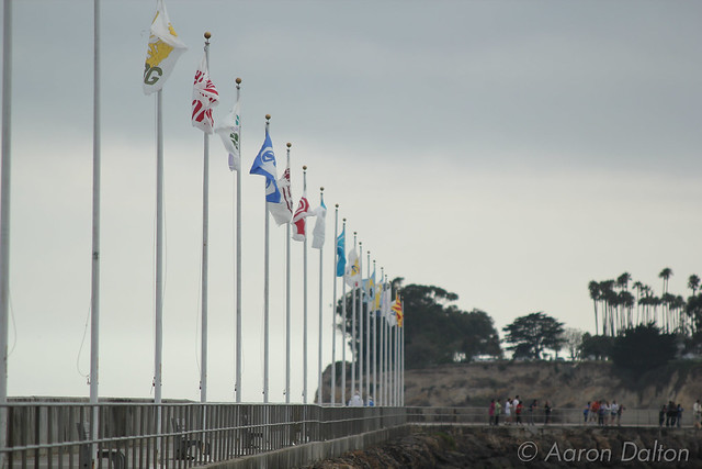 Flags Along Harbor Breakwater