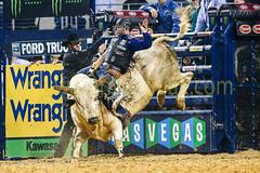 PBR 2014 - Dr. Pepper Iron Cowboy V (fastvegadan) Tags: horses usa cowboys arlington spurs texas boots unitedstatesofamerica bulls clowns buckles bushwacker roping beltbuckles bullriders probullriders