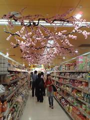 Taste Grocery Store