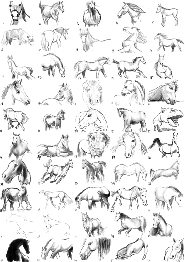 "Spartan Camp #42 - 50 gestures + Optional Study of ""Horse"""
