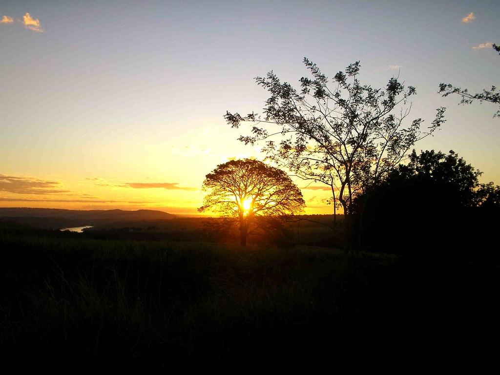 Araguari, a bela do Triângulo Mineiro 2573271850_c719624c31_b