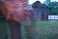 Fireflies (chris metzger) Tags: coast is do you thing can east catching coolest fireflies on the