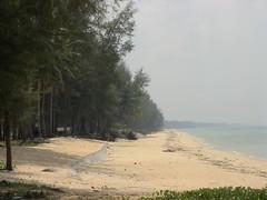 Pantai Tok Bali (Pasir Puteh, Kelantan, Malaysia.) Tags: asia malaysia kelantan pasirputeh tokbali visitkelantan majlisdaerahpasirputeh mohdasrol