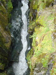 Gorge and Stream (CortneyRED) Tags: trip water rock stone washington moss stream gorge rushing
