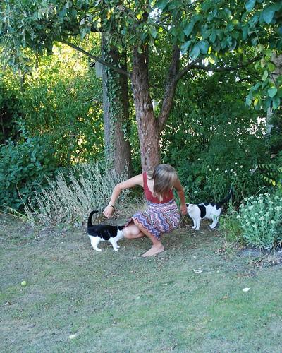 Yoga med katterna2