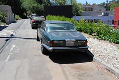 Jaguar XJ6L (1) (Mad Science) Tags: car jag jaguar dots xj xj6 downonthestreet xj6l