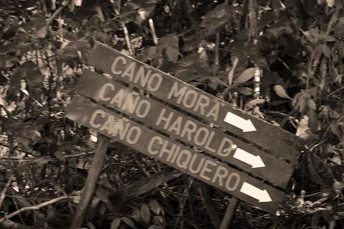 Costa Rica - Día 3 (272)