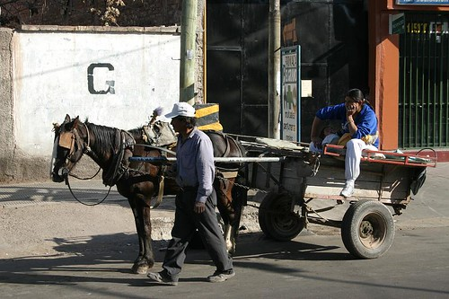 Horse cart in a Mendoza suburb...