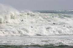 Mundaka (DIONISO--) Tags: grande surf mare group wave mundaka onda schiuma grandemaregroup