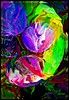 heart beet (patricia kranenberg) Tags: abstract color art digital flickrraimbowpics colorsinourworld creattività