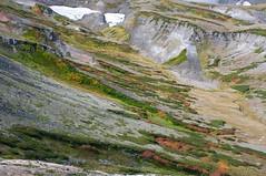白雲岳の裾野