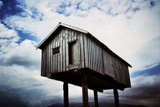shed on stilts