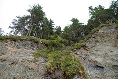 bluffs (dolanh) Tags: oregoncoast oswaldweststatepark shortsandsbeach