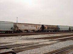 Soo Line and Canadian Pacific covered hopper cars. Chicago Illinois. November 2006.